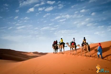 """""""O caminho faz-se caminhando, sob o sol quente"""" - Caravana de camelos atravessando o deserto do Saara, o maior deserto do planeta terra. Deserto do Saara, Marrocos - 2011"""