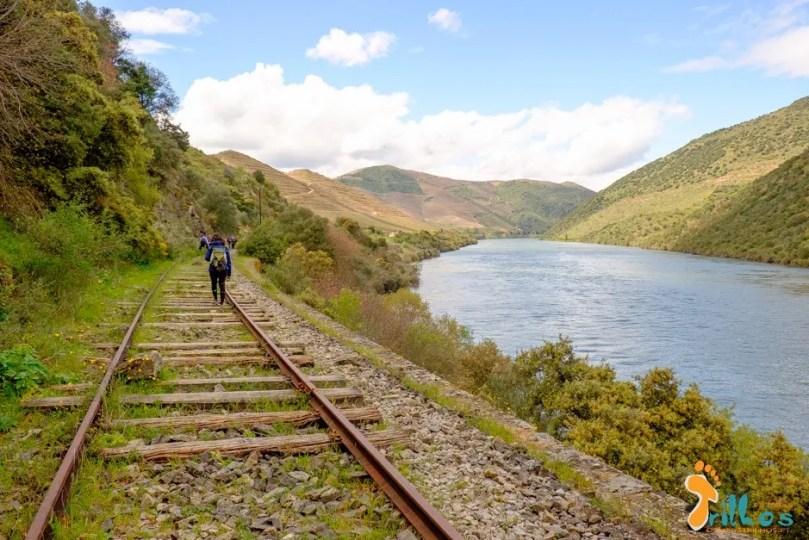 linha do douro - Barca D Alva - Pocinho-51