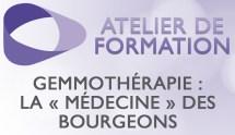 formation-gemmotherapie-medecine-bourgeons