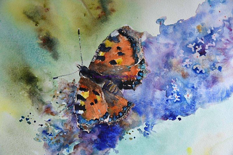 Julie Fowkes, Butterfly & Buddleia - Keyvolution !
