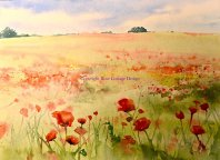 Julie Fowkes, Poppy field-Bradmore - Keyvolution !