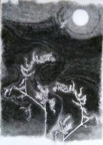 Christine Howard - Moonlit Ferns