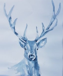 Clare Watson - Blue stag