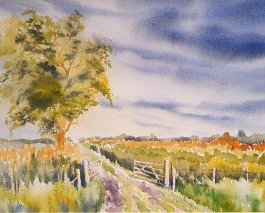 Clare Watson - Evening Stroll