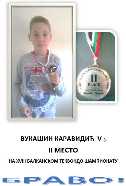 2016-09-27-12_18_39-vukasin-karavidic-53-microsoft-word