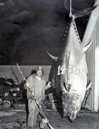 Bluefin_Tuna_World_Record_1,496_lbs
