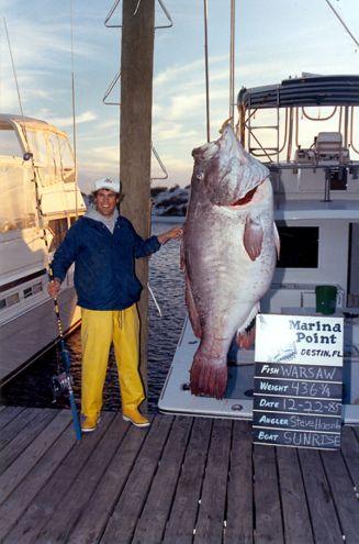 biggest-grouper-warsaw