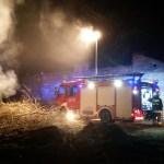 Interwencja pożar galezi zd3