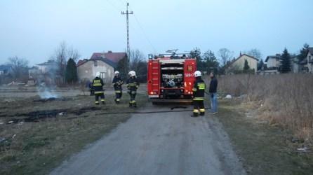 Pożar trawy przy ul.Hallera