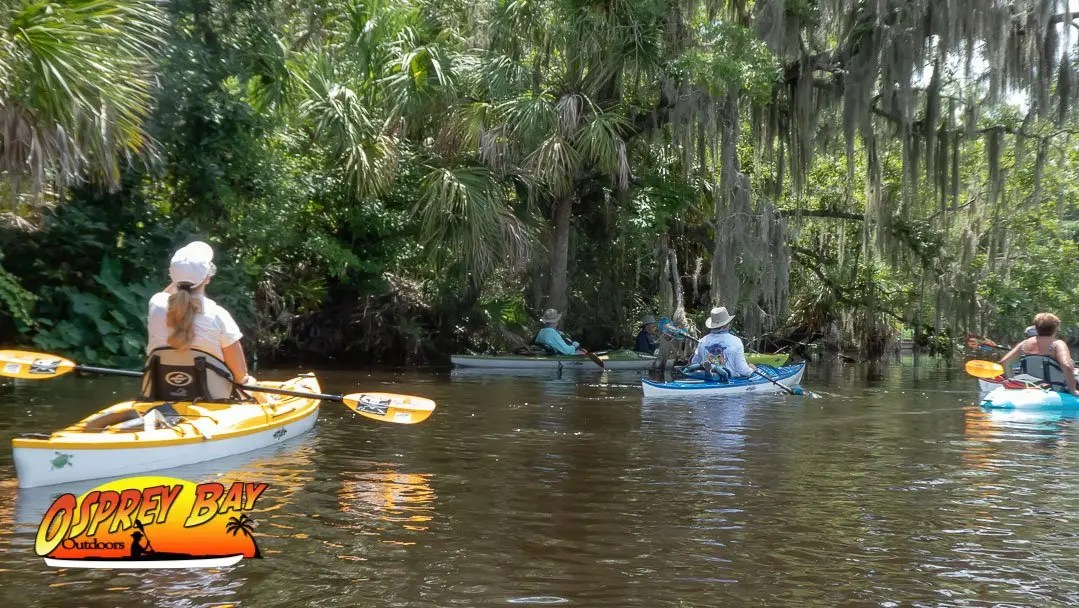 Braden River Paddle Trip June 2020