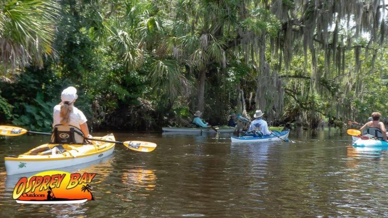Braden River Paddle Trip June 2020