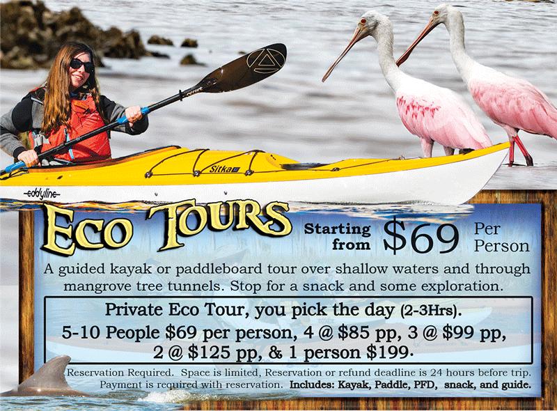Eco Tour Paddles 1