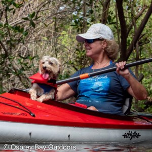 kayaker with dog, clam bayou paddle trip