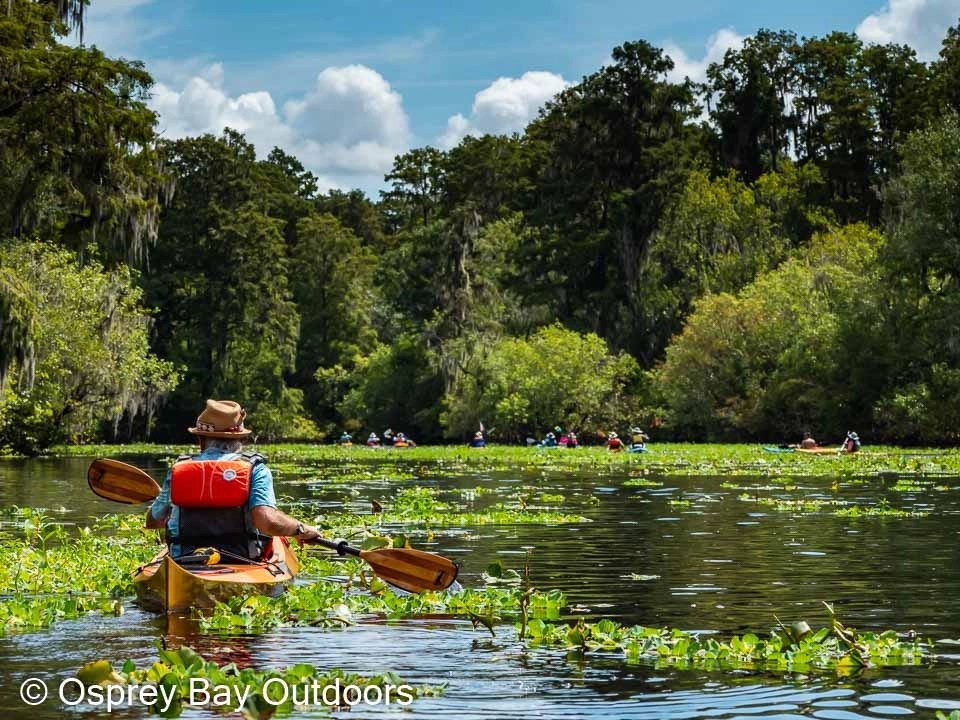 You are currently viewing Hillsborough River Paddle Trip Aug 2021