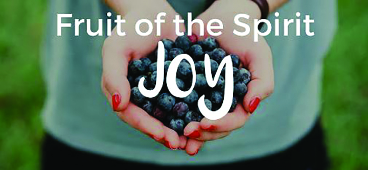 The Fruit Of The Holy Spirit: What Is Joy? - Osprey Observer