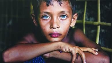 Photo of كتاب.. «لجوء» قصص من أدب العمل الإنساني