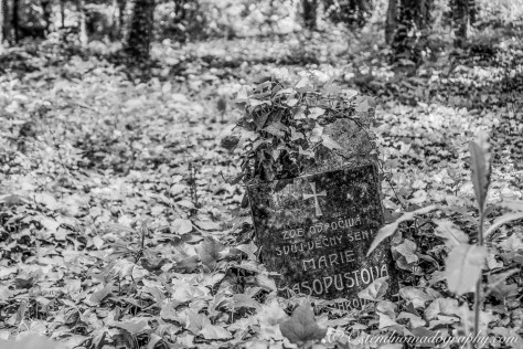 Gravestone in a abandoned cemetery