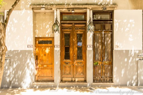Doors in San Telmo 1