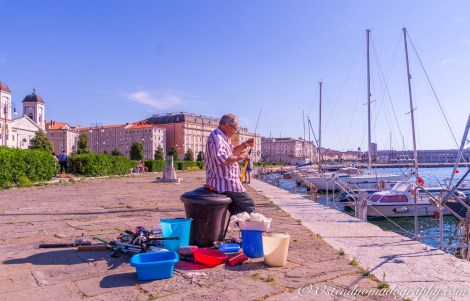 Fisherman on duty in Trieste