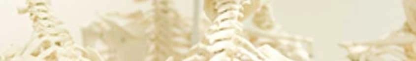 Osteopathie is een manuele geneeswijze. De Osteopraktijk in Amsterdam behandelt bewegingsbeperkingen van botten, spieren, bloedvaten, ingewanden.
