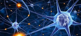 Regenerative Medicine Market Is Expected To Grow 23.54% CAGR till 2025
