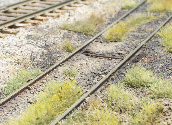 Static grass weeds surround a track on the I&W