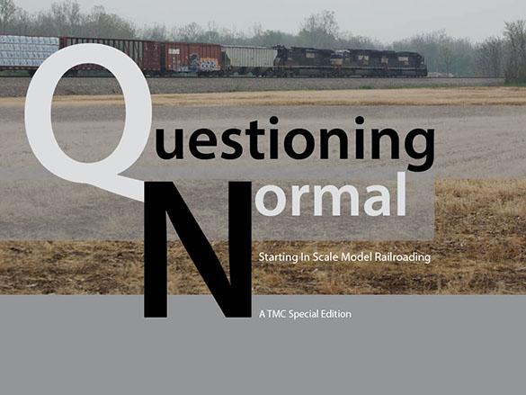 Questioning Normal Ebook cover