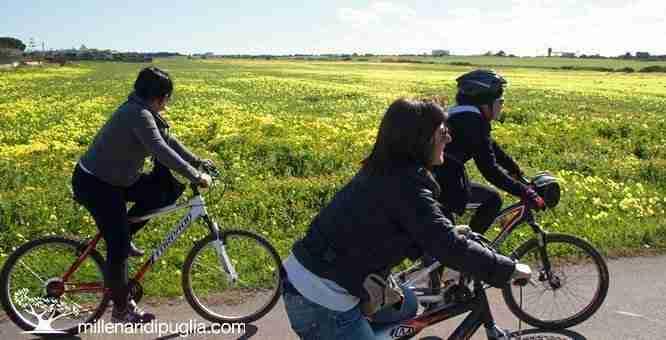 Millenari di puglia bici