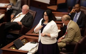 FLORIDA SENATOR ABORTION BILL