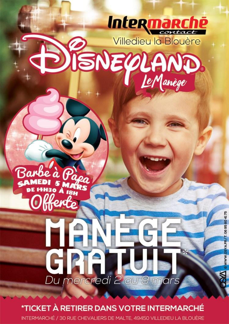Inter-Manege-DisneyLand-web