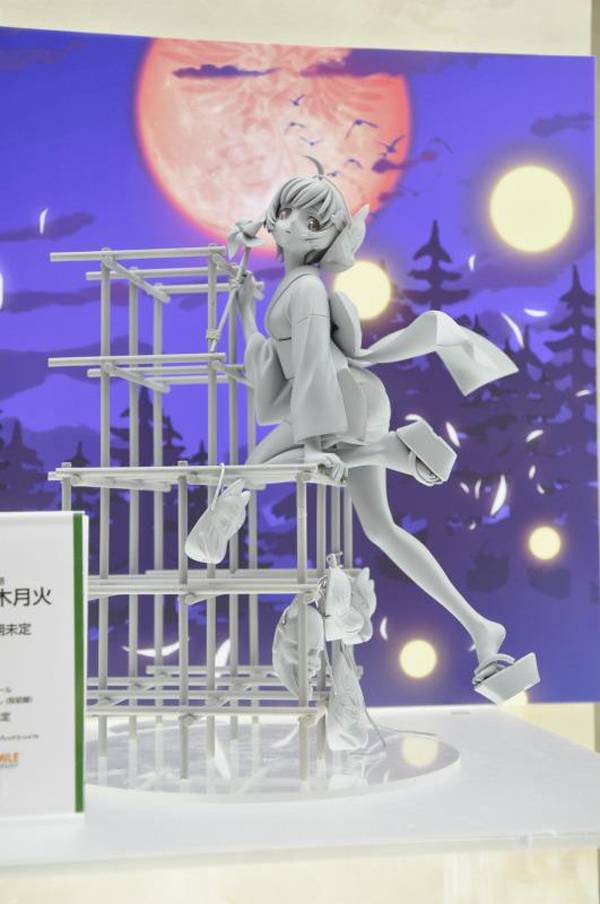 Wonfes 2013 Winter Coverage (19)