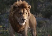 Eles falam!!! Novo trailer do remake de O Rei Leão