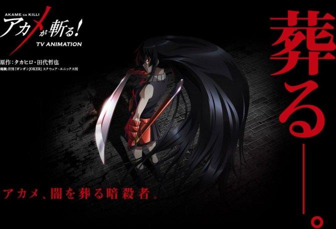 Akame ga Kill! Visual 1