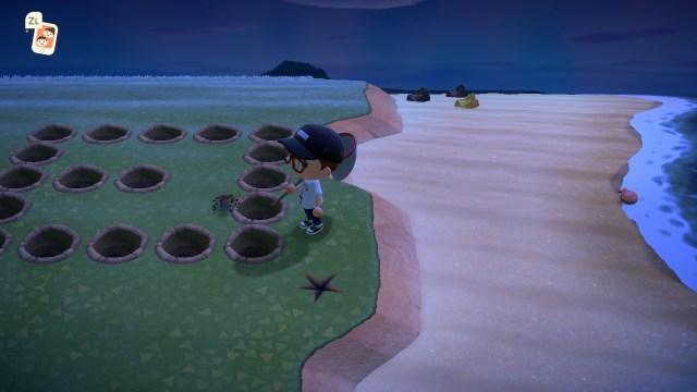 Animal Crossing: New Horizions - Tarantula Farming