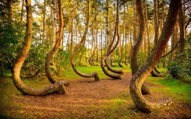 8 от най-мистериозните места в света