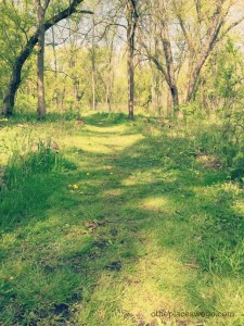 Wahoo Woods Dundee - Grassy Trail