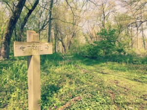 Wahoo Woods Dundee - Trail Sign