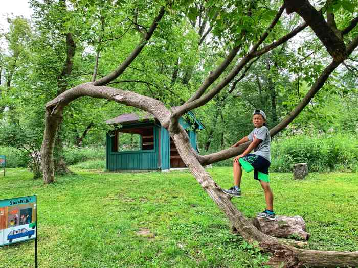 Enjoy nature at Wahoo Woods, a nature play space in Dundee. Hop from log to log, check out the Curiosity Shed, or hike Library Springs trail.