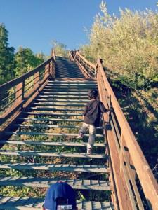 Road to Ludington Michigan - Inspiration Point Arcadia Steps