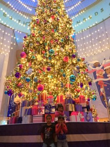 Holiday fun at Museum of Science and Industry Chicago's Christmas Around the World and Holiday of LIghts