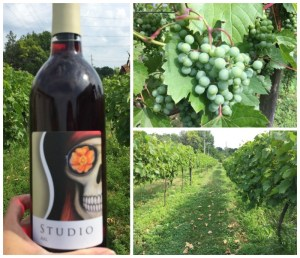 How to have a romantic getaway in Lake Geneva including sipping wine at Studio Winery.