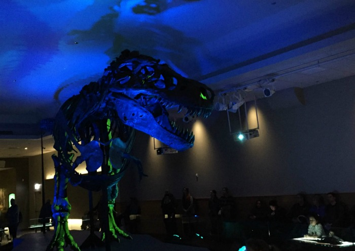 See SUE the T.rex's new home at Field Museum in Chicago