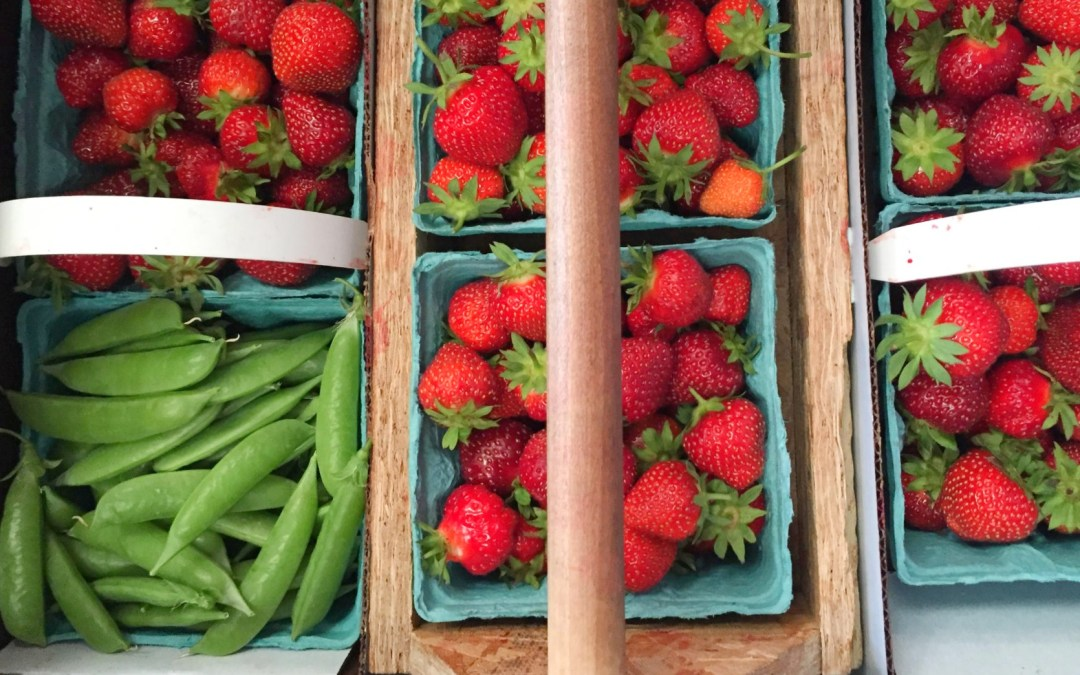 Strawberry Picking at Cody's Farm & Orchard