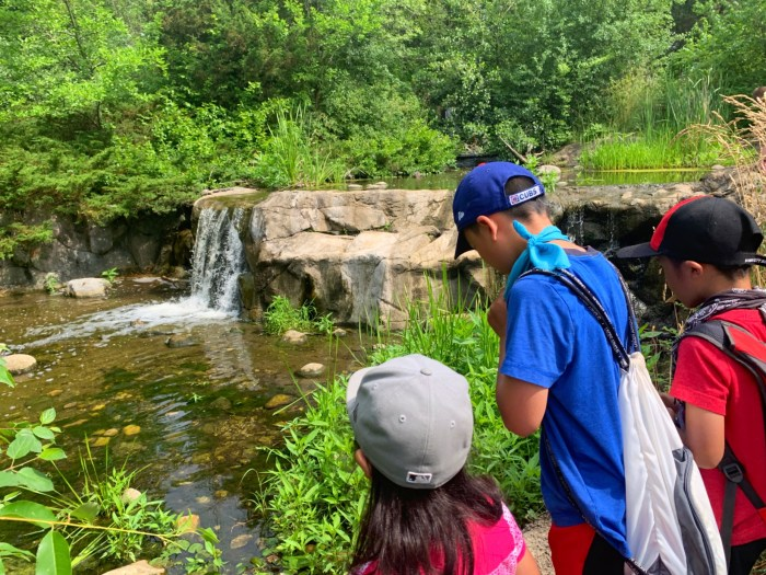 Explore Lake Katherine Nature Center and Botanic Garden is Palos Heights, Illinois. Find waterfalls, easy hiking trails, a nature center, gardens, and more.