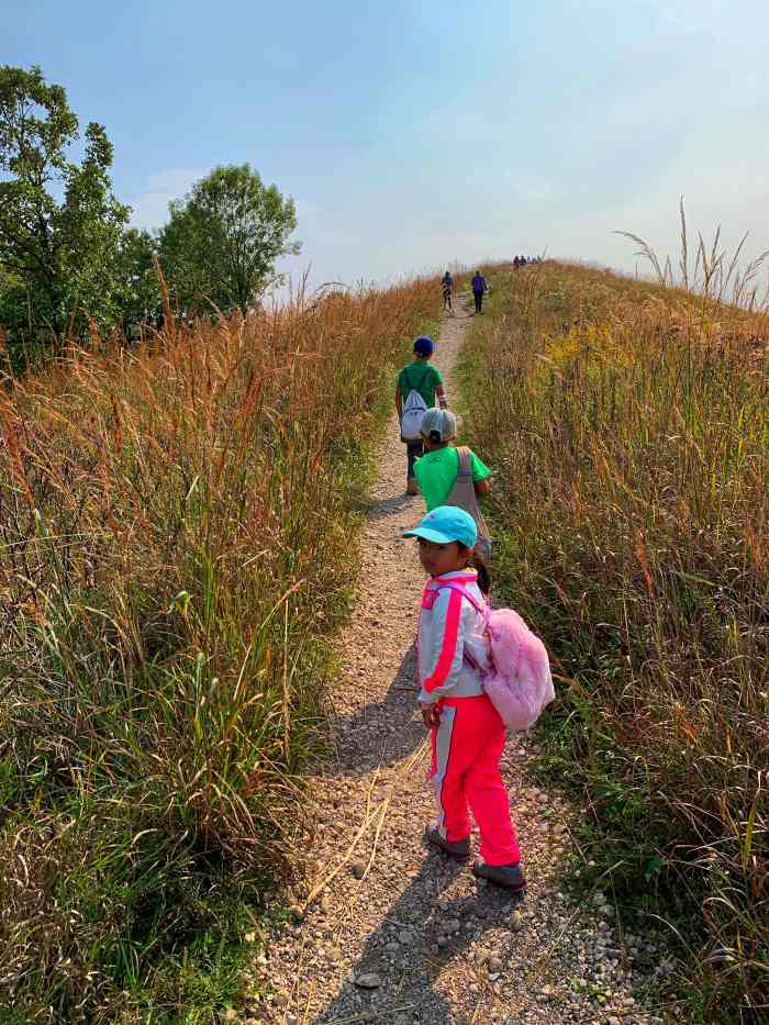 Fun unique fall experiences in Chicagoland to add to your fall bucket list like climbing a kame or going through an apple maze.