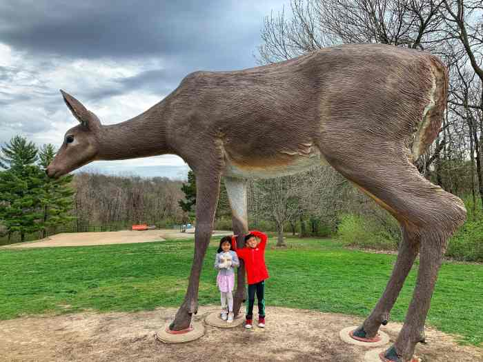 Bring the family to enjoy art and nature at Laumeier Sculpture Park outside St. Louis. One of the first and largest sculpture parks around!