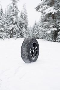 1476775468_ESPIA_ICE_Full_SNOW
