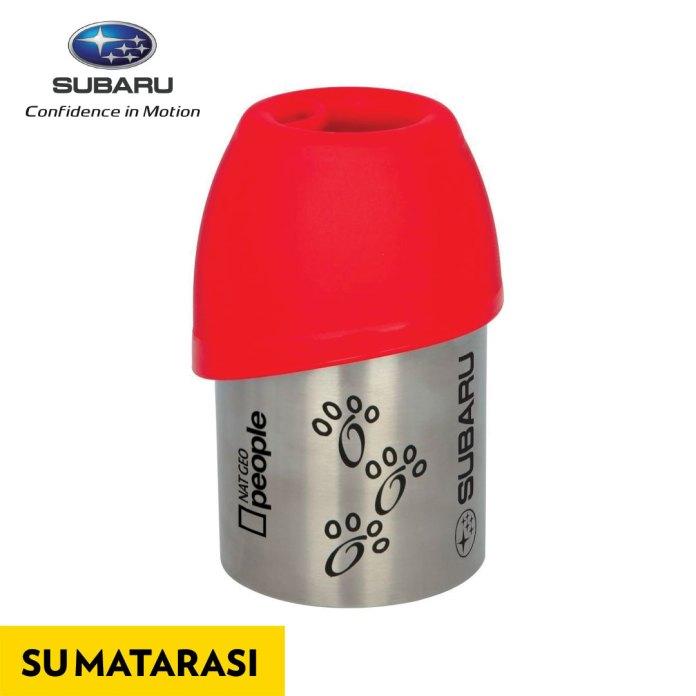 1489135206_Subaru_Sar__cerceve_03_sukab___matara