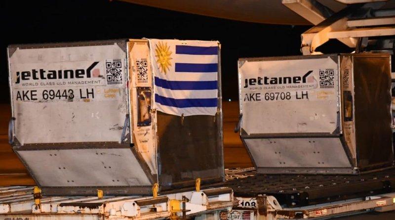 Uruguay negocia compra de un millón de vacunas Pfizer