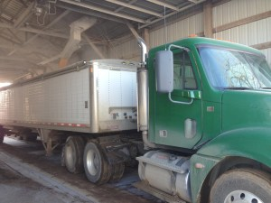 Freightliner being filled with corn
